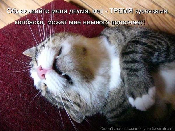 http://cs322724.vk.me/v322724313/5067/V8BoqkT2oIw.jpg