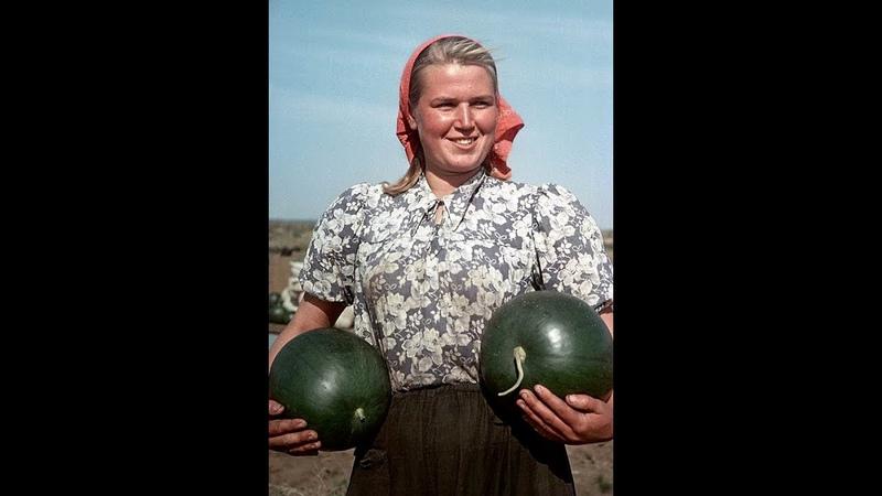 Эх, дааа.... и это был советский колхоз