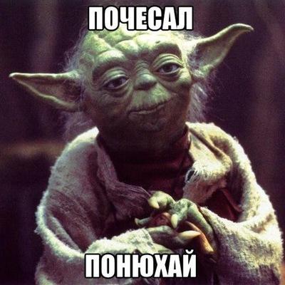 Александр Сутырин, 1 мая , Ейск, id215212451