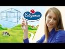 Лучшая реклама для привлечения клиентов I Как это делают для Савушкин продукт