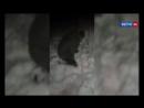 Воронежские охотники за головами отрезали палец закладчику за воровство наркотик