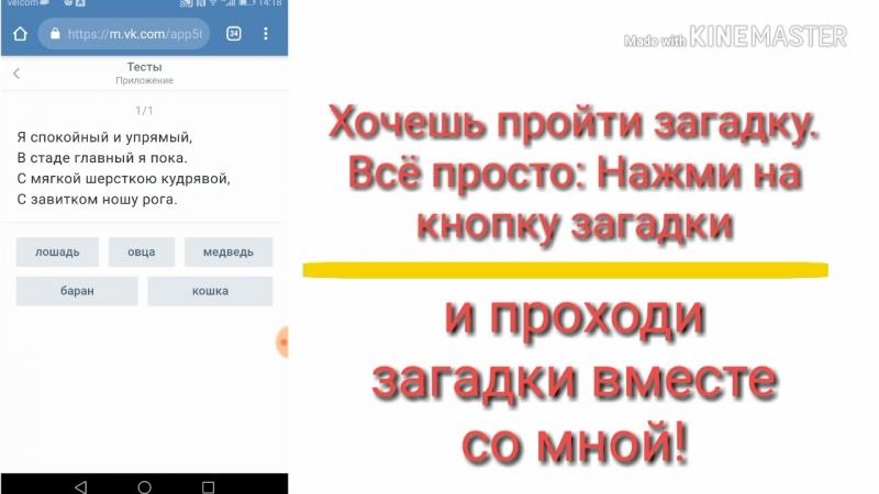 Как отгадывать загадки от моей группы Бот Вконтакте