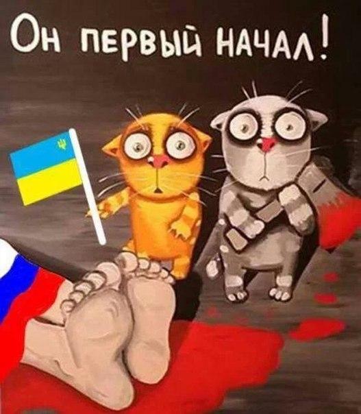Лидер луганских боевиков анонсирует взрывы на избирательных участках в день голосования - Цензор.НЕТ 8007