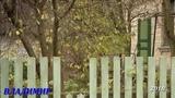 Валерий Коротин ОБЛОМАННАЯ ВЕТКА 22.10.2018 В.М Н.М