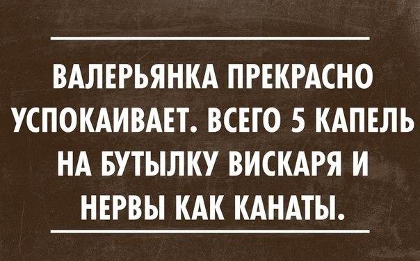 https://pp.vk.me/c7002/v7002765/f952/nogyjaS_hvg.jpg