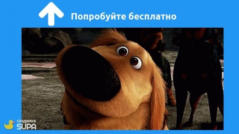 Q-parser.ru