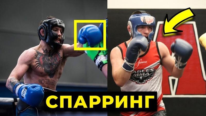 СРАВНЕНИЕ СПАРРИНГА КОНОРА И ХАБИБА UFC 229 chfdytybt cgfhhbyuf rjyjhf b [f,b,f ufc 229