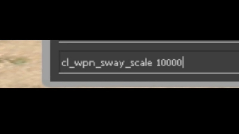 Cl_wpn_sway_scale 10000