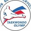 "Клуб боевых искусств "" Олимп таэквондо""Новосибир"