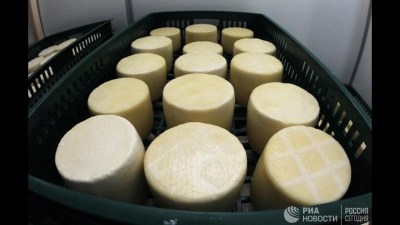 Соревнования по скатыванию сыра с горы в Британии