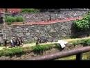 Novo vídeo do set de filmagens de Mulher-Maravilha 1984, hoje em Georgetown. via @Cpatrickis