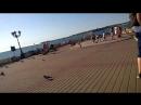 Гуляем на Нахимова в парке. Увидели чип и дейла
