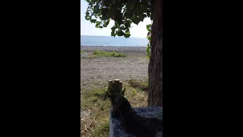 Маяк, солнце, море, лето продолжается))