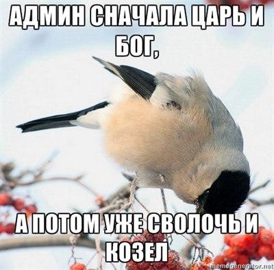 http://cs405329.userapi.com/v405329650/37fc/TzOlVDhfji0.jpg