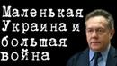 Маленькая Украина и большая война НиколайПлатошкин