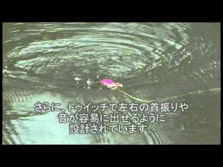 Halco Nightwalker Top Water Lure Video