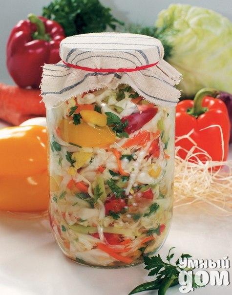 Коллекционируем рецепты заготовок на зиму! Салат белоцерковский Закусочный салат с капустой, перцем, морковью и зеленью. Ингредиенты: 1,5 кг. капусты красный перец и морковь – по 450 грамм 300 гр. лука стакан раст. масла зелень сельдерея и петрушки петрушка корень – 50 гр. соль – половина чайн. лож. ч.лож. сахара уксус – 2 стол. лож. лаврушка, перец Приготовление: Прокипятить масло, охладить. Нашинковать капусту стружкой, перец нарезать кусочками, морковь и корень петрушки – лапшой, лук –…