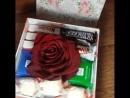Коробочка Счастья с большой голландской живой розой