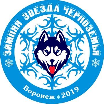 """Афиша Воронеж """"Зимняя Звезда Черноземья - 2019"""""""