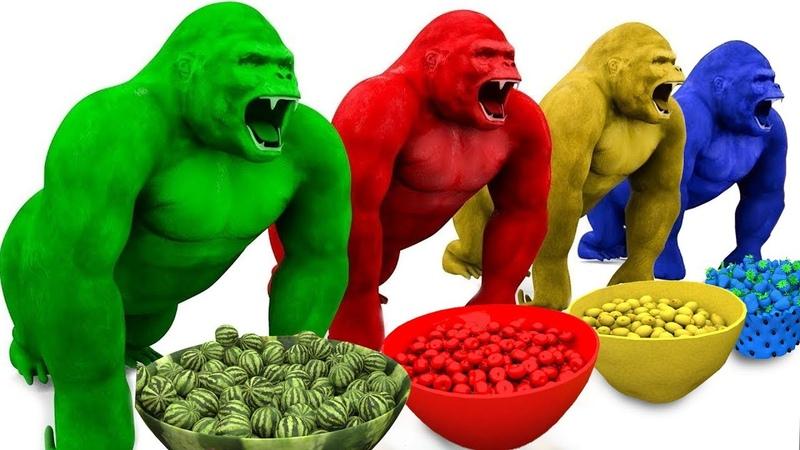 Aprende frutas y Animales con divertidos Monos en baño de frutas | Videos Educativos para Niños