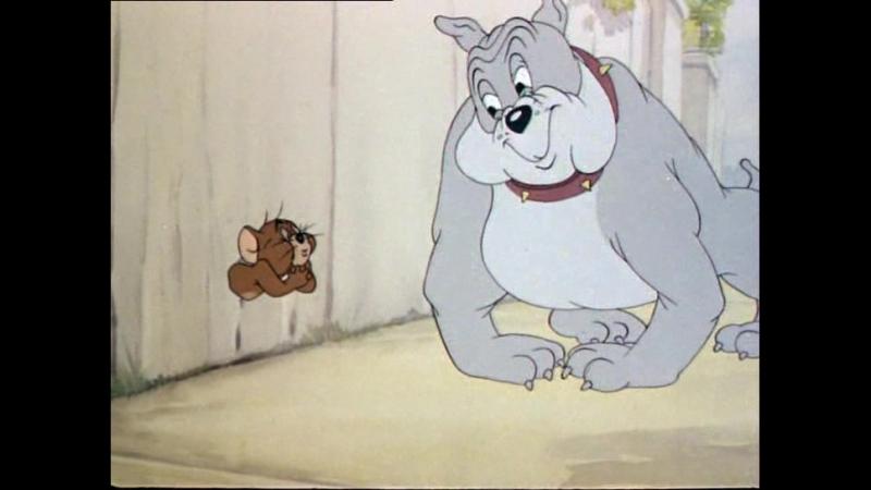 Том и Джерри - Телохранитель - Самые смешные серии 1