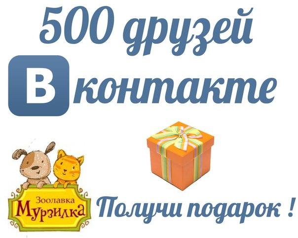 500 Друзей Вконтакте | Блог Мурзилка