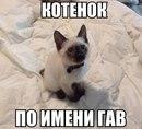 Фото Евгении Бормонтовой №19