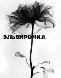 Эльвира Махалова, 17 января , Салават, id84128003