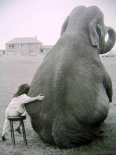 Снимок Джона Драйсдейла, Англия, 1986 год. «С другом»