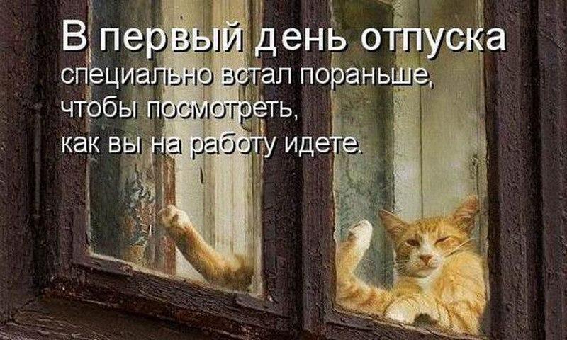 https://pp.userapi.com/c543103/v543103087/5432d/LMJGiX32Cq4.jpg