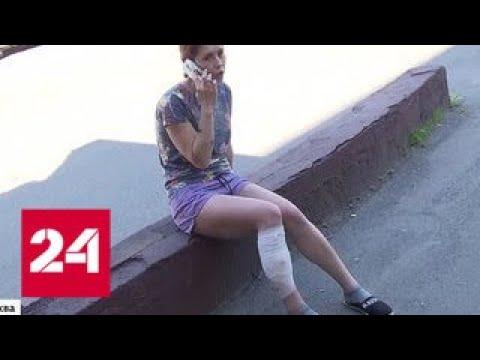 Огромный алабай напал на жительницу поселка в Новой Москве - Россия 24