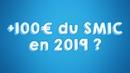 Hausse de 100€ du Smic en 2019 GiletJaune MacronDemission PoudreDePerlimpinpin