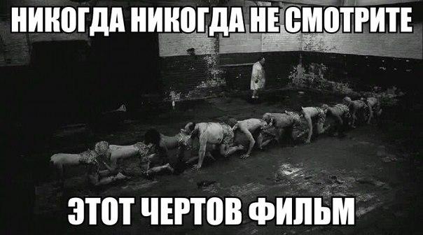 http://cs405030.vk.me/v405030100/b77b/iNzP4tyHOB8.jpg