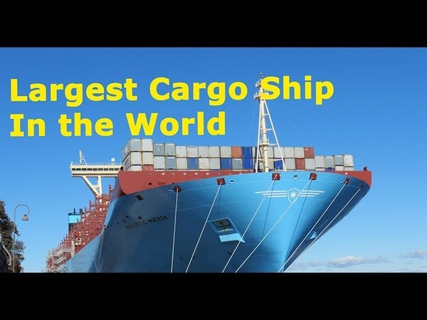 World's Largest Cargo Ship   Container Ship