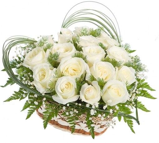 Цветы в розницу по оптовым ценам