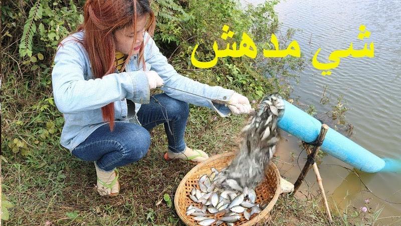 حقا مدهش شاهد كيف تصطاد هذه الفتاة السمك بت
