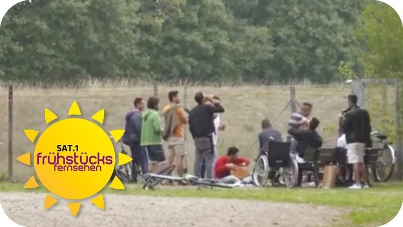 1300 Flüchtlinge im Dorf: Anwohner sind genervt   SAT.1 Frühstücksfernsehen   TV