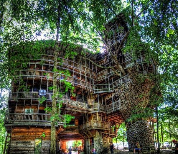 Дом на дереве в Кроссвилле,