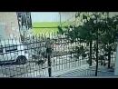 На Евдокимова собаки напали на женщину 17.9.2018 Ростов-на-Дону Главный