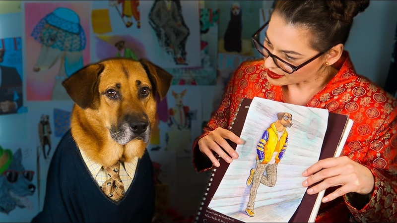 🐾 Suave Paws Doggy Tailor ASMR Menswear for Dogs🕺🏽