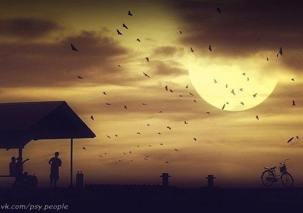 Великая мудрость – ждать. Огромное счастье – верить. И чувствовать, что опять Надежда откроет двери. Крепиться, когда нет сил И слезы, сглотнув, смеяться. И падая, не просить, И верить, и не бояться. И твердо, и точно знать - Надежда откроет двери, Когда научишься ждать И свято во что-то верить