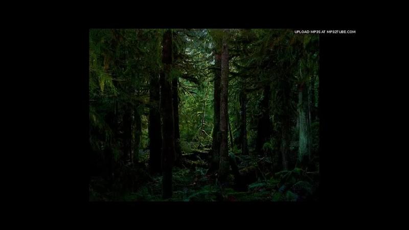 DJ.UVX - RAYS RUBY FRUIT (JUNGLE MIX)