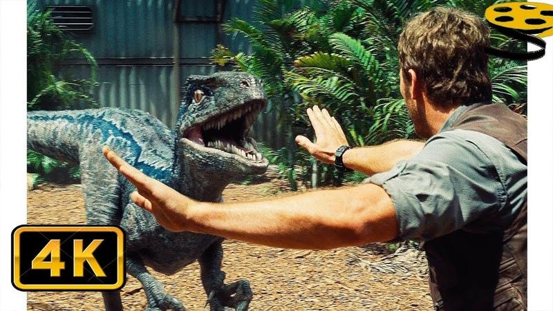 Оуэн Грэди дрессирует Рапторов Спасение работника Парка Мир Юрского периода 4K ULTRA HD