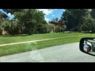 ФлоридаЯлта - ооой, опять этот придурок, ну такое ж дурнооое, ну такое ж тупоое