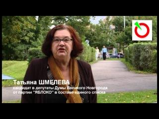 Татьяна Шмелева - выборы в Думу Великого Новгорода