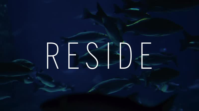 RESIDE MOMENTS - Diving the Eco Friendly Way