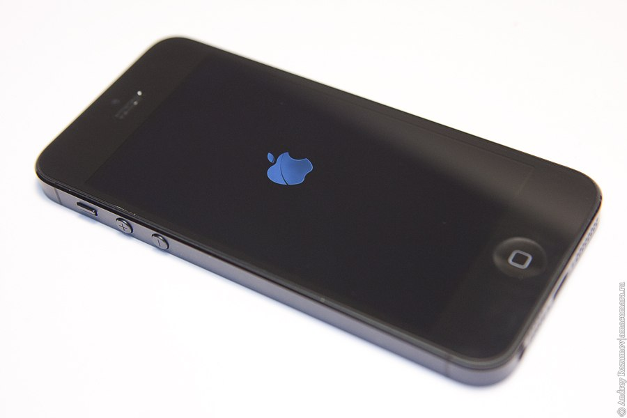 ремонт Apple iPhone 5 разбор детали
