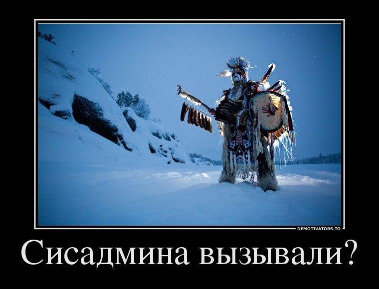 Дмитрий Яшин, Калининград - фото №1
