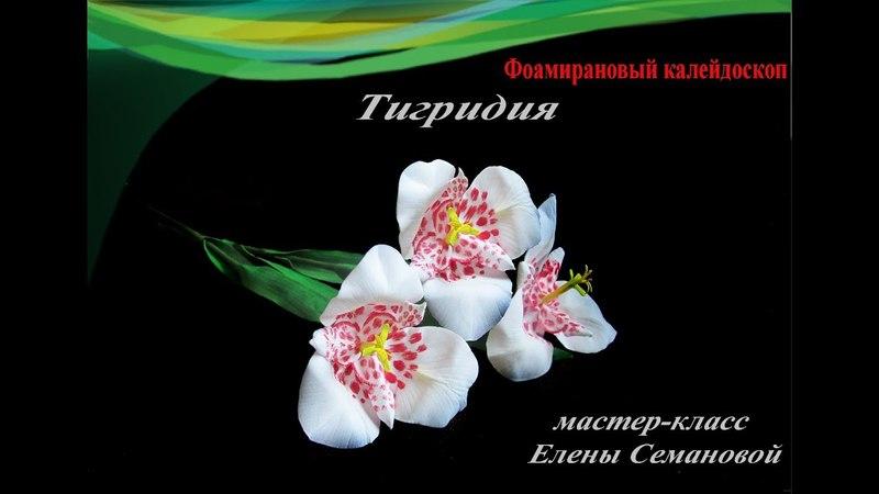 Тигридия из фоамирана. МК Елены Семановой