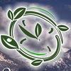 Экология и экологическая грамотность